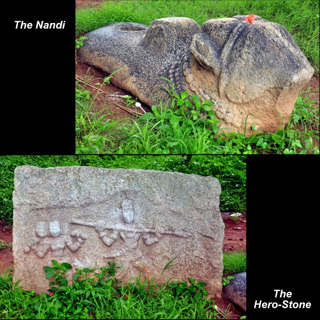 Virgal-Nandi Collage