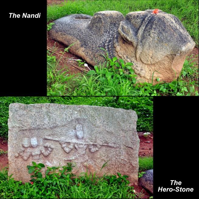 Virgal-Nandi Collage