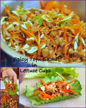 Spicy Tofu Salad Collage