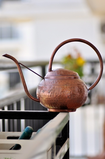 I love the angles on my copper watering pot!